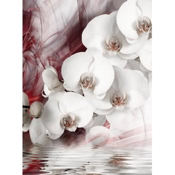 "Фотопанно ""Белая орхидея"", 200х270cм"