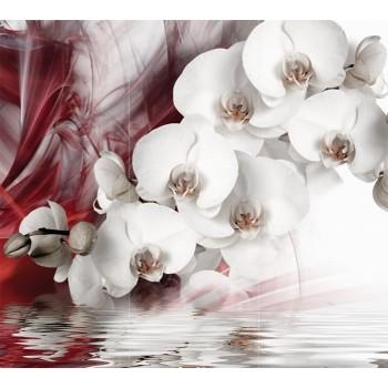 "Фотопанно ""Белая орхидея"", 300х270cм"