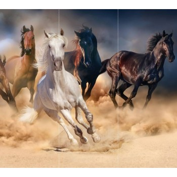 "Фотопанно ""Бегущие лошади"", 300х270cм"