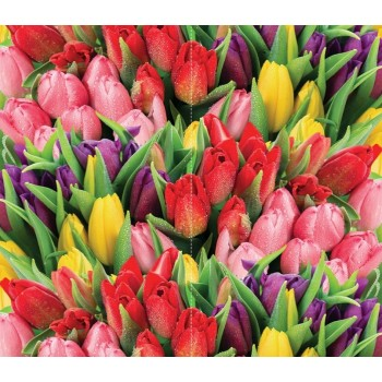 """Фотопанно """"Букет разноцветных тюльпанов"""", 310х270см"""